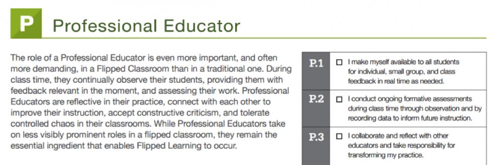 FLIP: Professional Educator